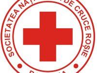 Colegiul National Gheorghe Titeica – locul al II lea pe tara la Sanitarii Priceputi