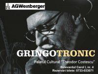 Gringotronic – concert AG Weinberger la Turnu Severin!