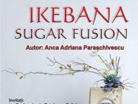 Lansare de carte în Craiova