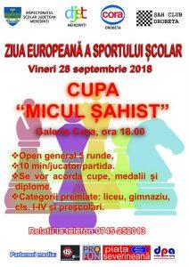 Partidă de Sah cu ocazia Zilei Europene a Sportului