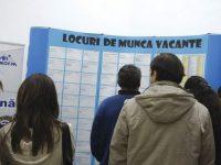 Aproape 4.000 de persoane şi-au găsit un loc de muncă cu sprijinul AJOFM Mehedinț